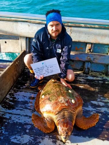 Projeto Pinípedes do Sul realiza embarque para monitorar interações de animais marinhos com pesca de arrasto