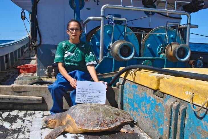 Projeto Pinípedes do Sul coleta dados sobre a interação da pesca com pinípedes em embarque