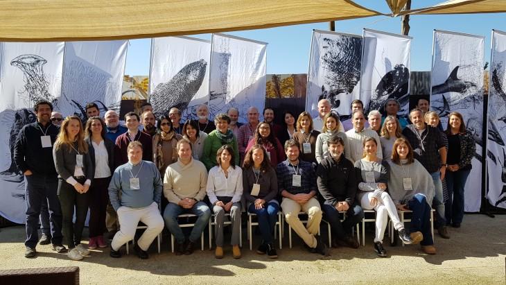 Projeto Pinípedes do Sul participa de evento em prol da conservação dos oceanos no Chile